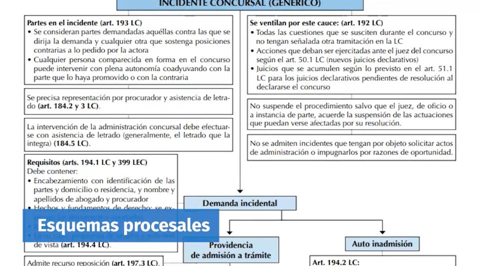 El Consultor Jurídico_Aspecto de los Esquemas Procesales